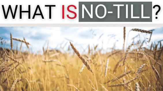 RFM NT What is no-till farming